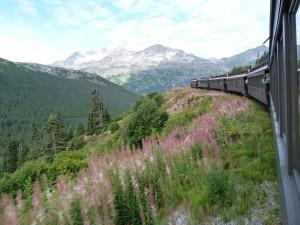 Alaska 303
