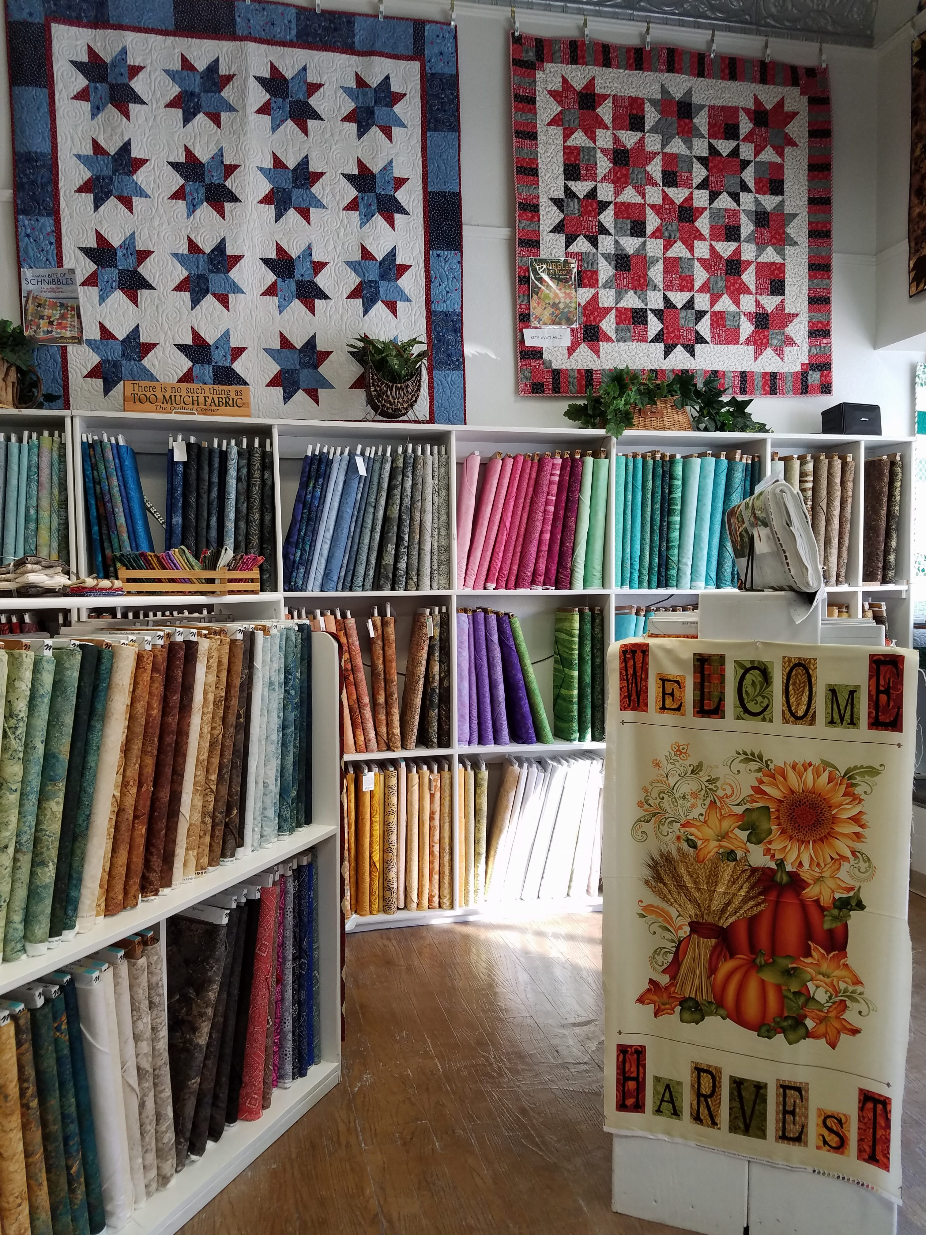 Quilt store | Dragonfly Quilts Blog | Page 2